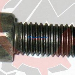 Болт М10х1,5х 20 универсальный (ГАЗ)